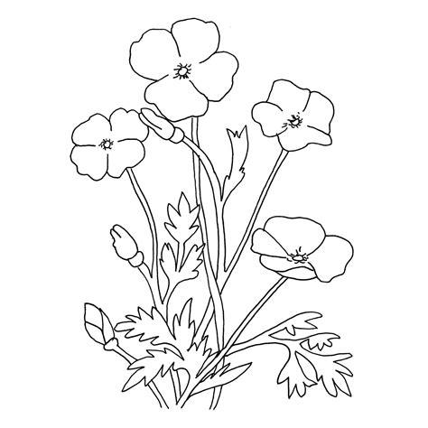 imagenes de flores grandes para dibujar dibujos de flores grandes para colorear