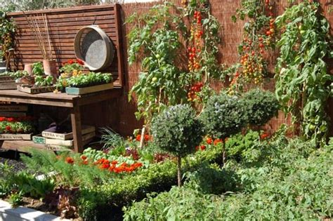 23 best images about gardening on pinterest gardens vegetables and vegetable garden