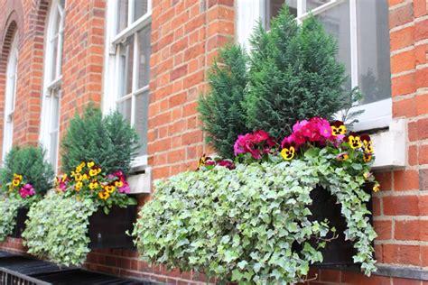 Bepflanzung Balkonkästen by Balkonksten Bepflanzen Ideen Ideen Balkon