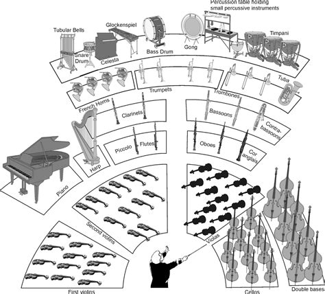 the sections of the orchestra the orchestra diagram the free engine image for user