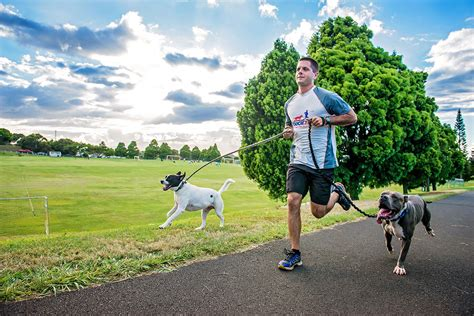 running with your canicross get fit with your lifeprovidr