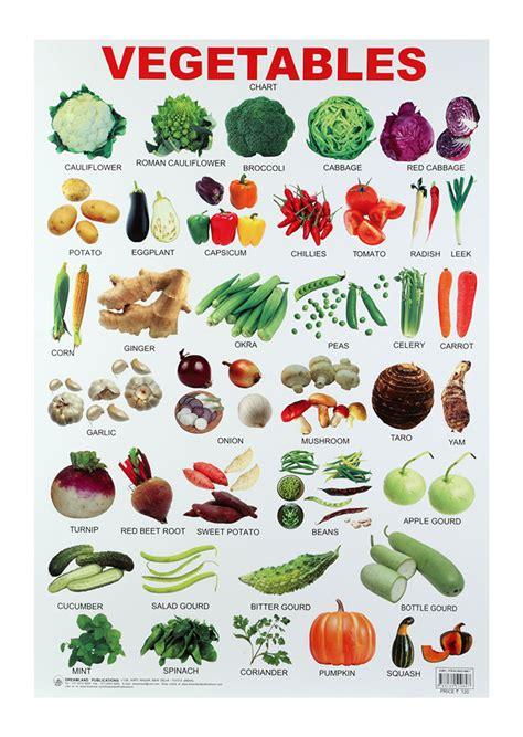 vegetables chart buy dreamland vegetables chart in india kheliya toys