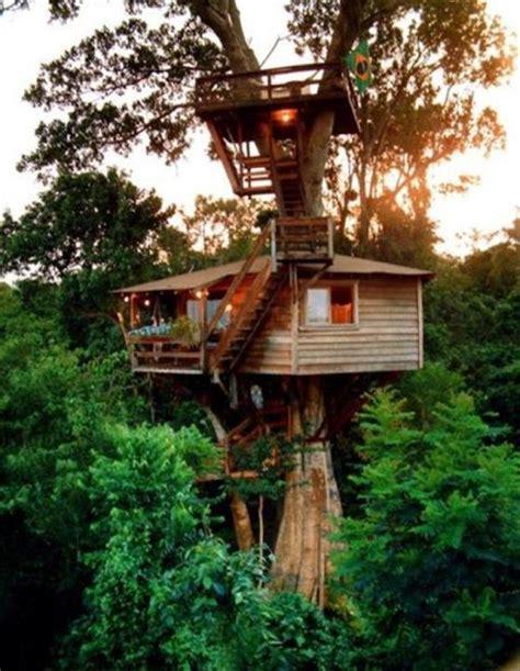 amazing tree houses tree houses dumpaday 3 dump a day