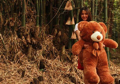 Boneka Beruang Boneka Lucu Murah Berkualitas boneka teddy boneka lucu toko boneka