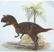 Carnotaurus  HowStuffWorks