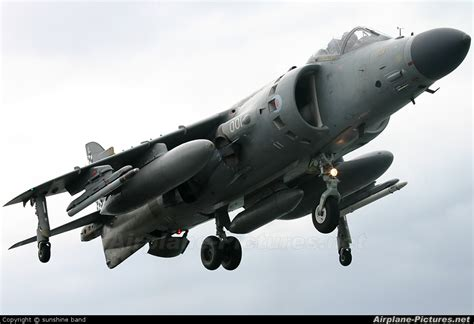 harrier section 2 zh796 royal navy british aerospace sea harrier fa 2 at