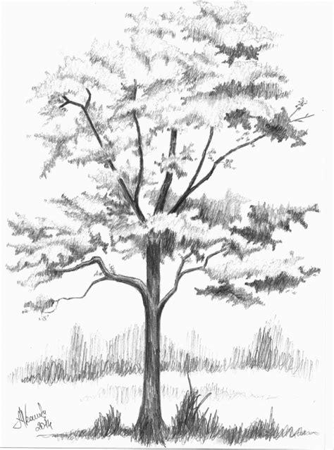 cara lolos tes psikotes menggambar pohon dan penjelasannya ajaib bin ladden