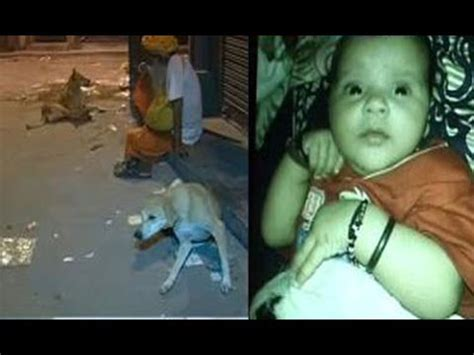 kills baby stray kills 2 months baby in delhi