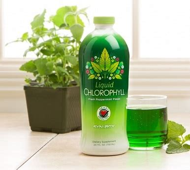 Obat Herbal Liquid Chlorophyll liquid chlorophyll synergy worldwide jual klorofil