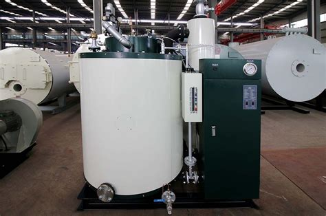 small capacity gas fired steam generator