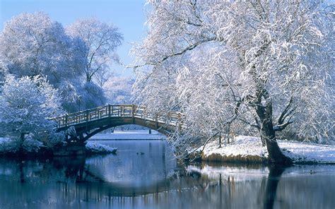imagenes del invierno graciosas el frio invierno en alemania by yan vista youtube
