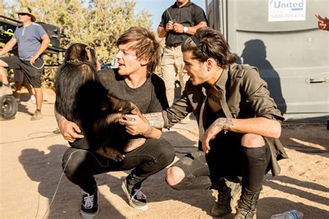 animal two boy and one outrage as one direction pictured with monkey in