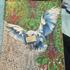 harry potter coloring book finished my picture colored in my harry potter coloring book