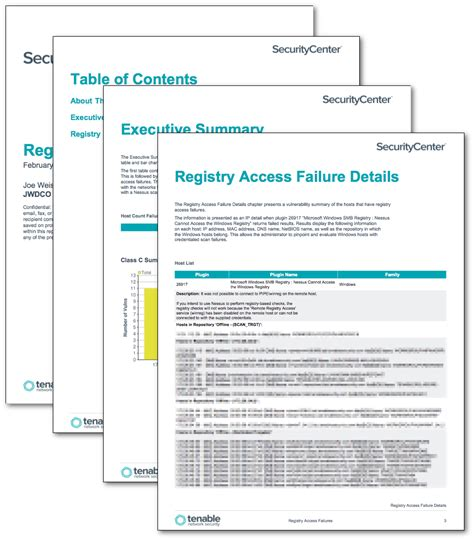 accessibility report template registry access failures report sc report template