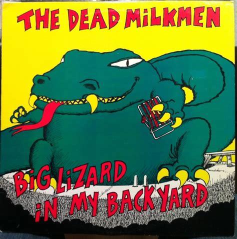 big lizard in my backyard lyrics 183 best worst album cover art images on pinterest bad