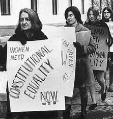 feminism resistance and revolution in s america books s rights 1950s through 1970s dbq