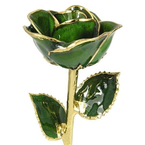 "24k Gold Trimmed Rose: 11"" Dark Green Rose: Love Is A Rose"
