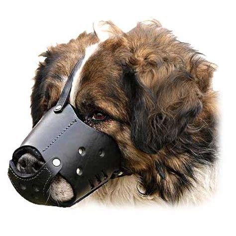 comfortable muzzles for dogs rottweiler leather dog muzzle everyday comfortable dog