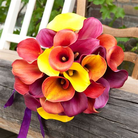 Fall Flower Picture Wedding by Fall Wedding Bouquets Inspirations Events