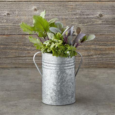 galvanized planters williams sonoma