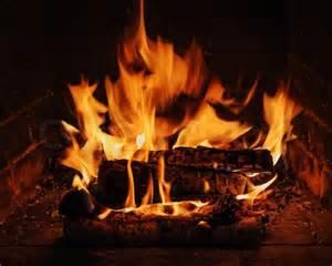 brennholz kamin kamin mit brennholz birke und flamme stockfoto colourbox
