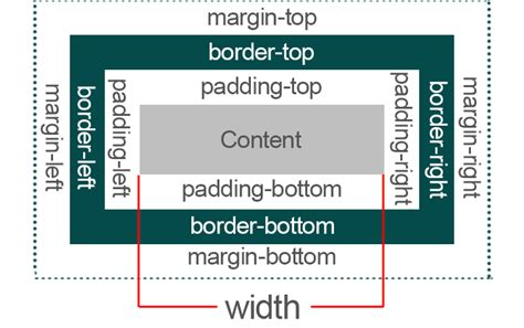 css tutorial margin padding html what is difference between css margin and padding