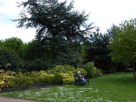 grappenhall walled garden grappenhall heys walled garden