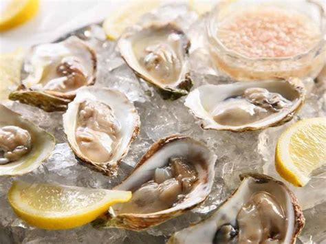 Oyster Health what are the health benefits of oysters lifealth