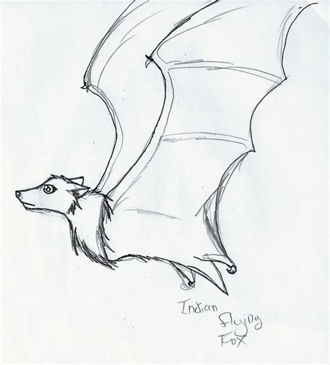 how to draw doodle for indian flying fox doodle by iceheart lunarae on deviantart