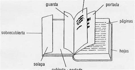 dibujo de las partes de un libro para niños los piratas del quevedo partes de un libro