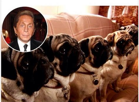 valentino and pugs giancarlo giammetti on his book and valentino s instagram fam