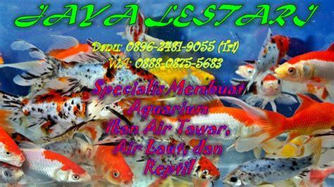 Jual Aquascape Jakarta Jual 0896 2481 9055 jual aquarium jakarta jual aquarium aquascape