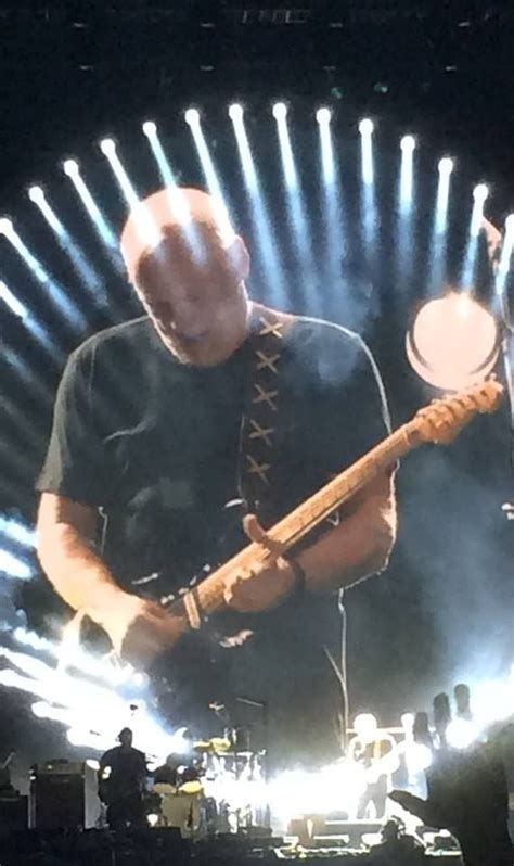comfortably numb david gilmour 699 best pink floyd images on pinterest
