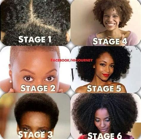 stages of natural hair which stage are you natural hair pinterest stage