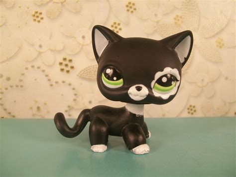 lps cats and dogs littlest pet shop images cat 2249 hd wallpaper and background photos 33823192