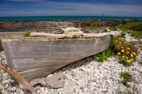 ark boat beached wooden boat kaikoura coast new zealand photo information