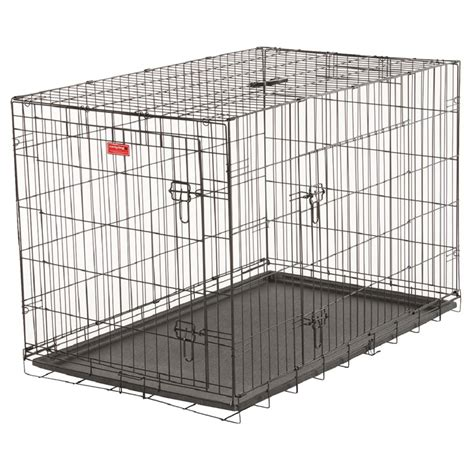 lowes kennels cages at lowes ute cages featured products blue hawk 10ft x 5ft x 6ft outdoor kennel