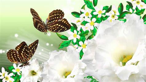 wallpaper flower fantasy hq wallpapers fantasy flower wallpapers