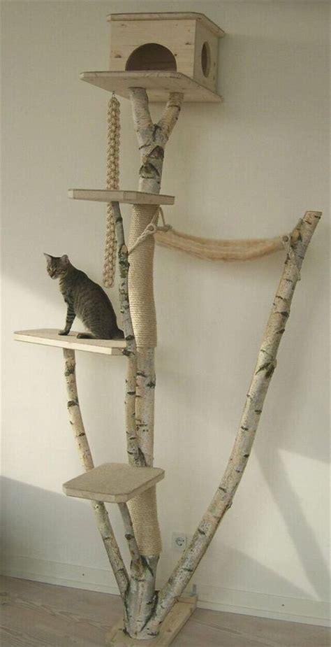 indoor cat tree ideas  play  relax homemydesign