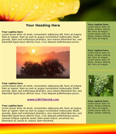Html Newsletter Template Free free html newsletter templates 171 heavensgraphix