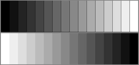gray shades digital cinematography calibration