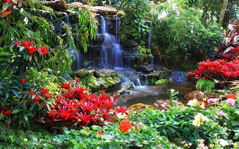 flowers gardens and landscapes nature landscapes garden plants flowers pool trees colors