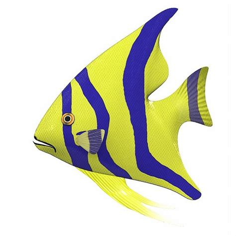 animation clipart animated fish clipart best