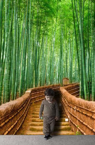 bamboo wall mural bamboo forest wall mural 6043 stickerbrand wall