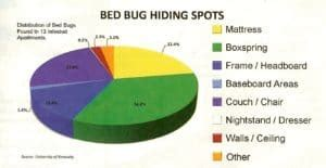 bed bugs faqs