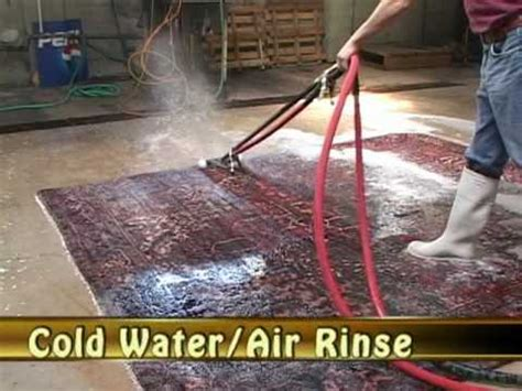 tinney rug cleaners tinney rug cleaning
