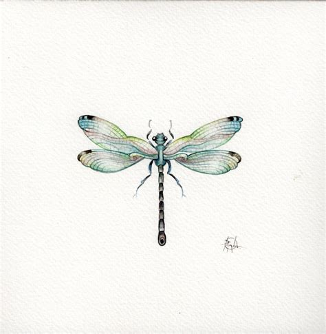 9x7 watercolour dragonfly no 3 handpainted not a