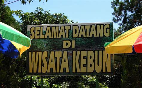 Pancing Makassar wisata kebun bontomanai gowa makassar
