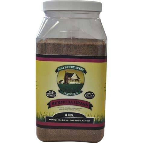 hulled bermuda couch mayberry 8 lb bermuda grass seed 96020 the home depot