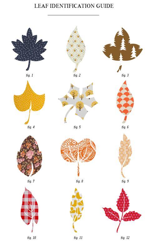 leaf pattern identification index of wp content uploads 2012 12